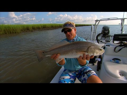 Low Country Reds - REDFISH in Charleston, South Carolina