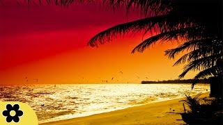 8 Hours Music for Sleeping, Soothing Music, Stress Relief, Go to Sleep, Background Music, ✿3081C