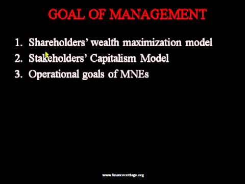 shareholders wealth maximization