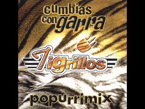 Los Tigrillos Popurri Mix Vol. 1