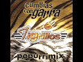 Los Tigrillos de Popurri Mix Vol. 1