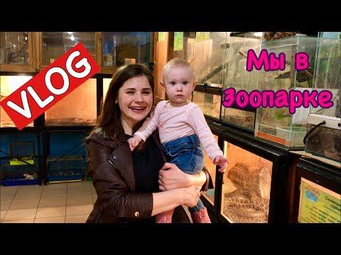 Vlog: Мы в Зоопарке и в гостях в Мариуполе