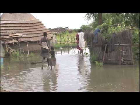 descriptive flood in village essay