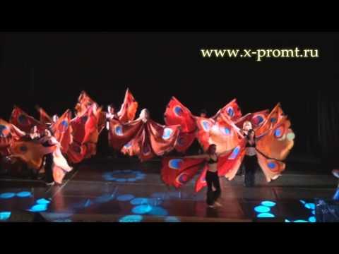 Танец живота с крыльями бабочек. Belly dance with butterfly wings.