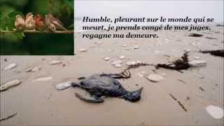 Video Sacrilège ( Noellia Lawren)