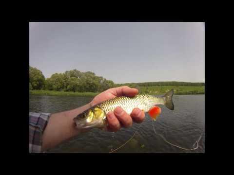рыбалка на щуку в орловской