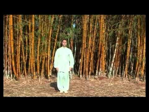 Tai Chi Chuan - Uma Via Para o Tao