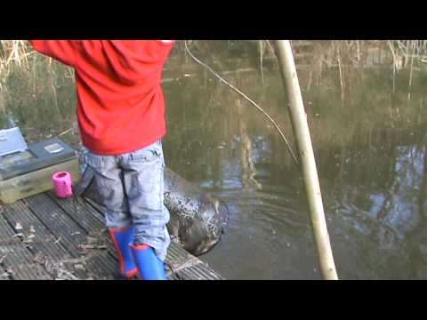 Catching fish in a crayfish trap
