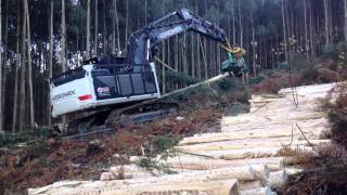 HİDROMEK Forestry Application with HMK 220 NLC (Spain)