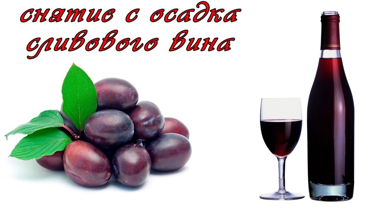 снятие с осадка сливового вина 01,09,2013 - YouTube