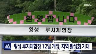 도권/횡성 루지체험장 12일 개장