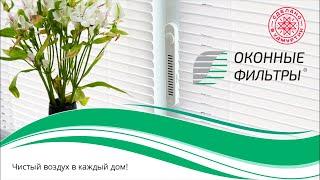Вебинар по франшизе «Оконные Фильтры» с Денисом Дмитриевым