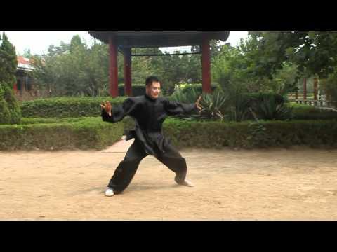 An Wushu - Baji Quan