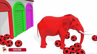 Learn Colors With Soccer Balls Elephant Animal for Children - Cartoon Nursery Rhymes f   #Part  238