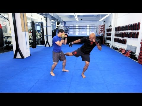 Kicks | MMA Fighting Techniques Image 1