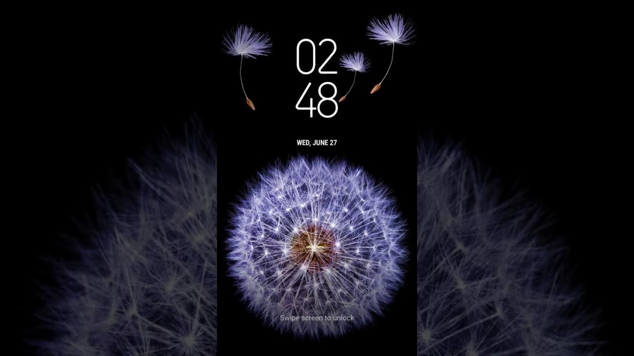Samsung Themes Animated Wallpaper Galaxy Dandelion Bergen