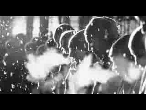 Schindler's List - Sample Video