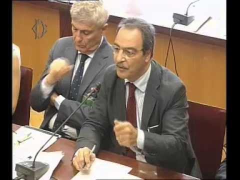 Roma - Audizioni organizzazioni ittiche su fermo pesca biologico (23.06.15)