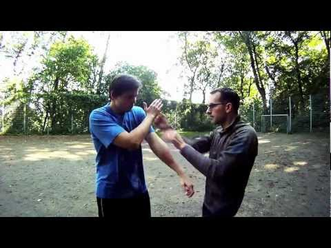 Functional Wing Chun Techniques Image 1