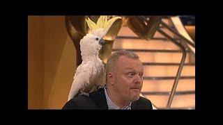 Dieser Kakadu hat´s drauf! - TV total