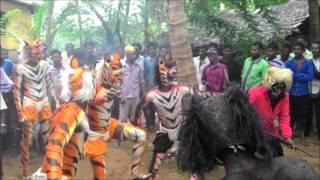 Tiger dance by kmn boyzz
