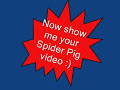 Simpsons - The full Spider Pig Song