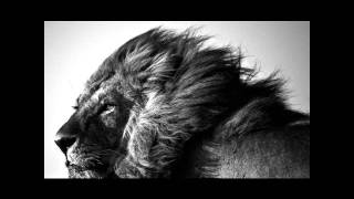 Vídeo 37 de Ratata