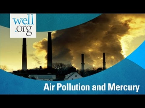 Air Pollution and Mercury Linked to Autism