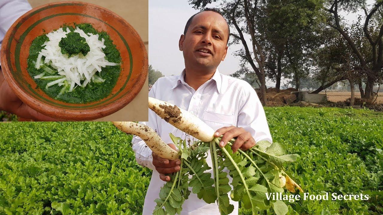 Mooli Ka Raita Recipe | Radish Raita | Mooli Ki Chutney | Radish Chutney | Village Food Secrets