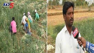 కంటతడి పెట్టిస్తున్న ఉల్లిపంట..! | Onion Farmer Problems In Nizamabad