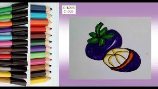 All Clip Of How To Draw Mangosteen Bhclip Com