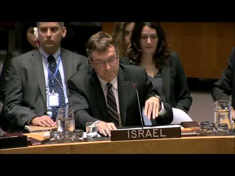 Ambassador David Roet addresses the Security Council session on the Middle East