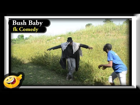 Bush Baby❤ fk Comedy. Funny Videos-Vines-Mike-Prank-Fails, Try Not To Laugh Compilation.