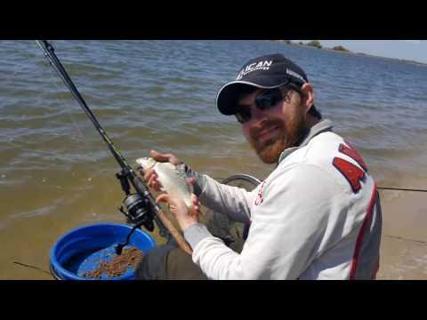 рыбалка в ростове рогожкино
