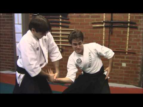 Ogawa Ryu International Bugei Society Excellence Aikijujutsu Image 1
