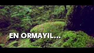 orkunnu njan female ver unplugged malayalam romantics song from alone album