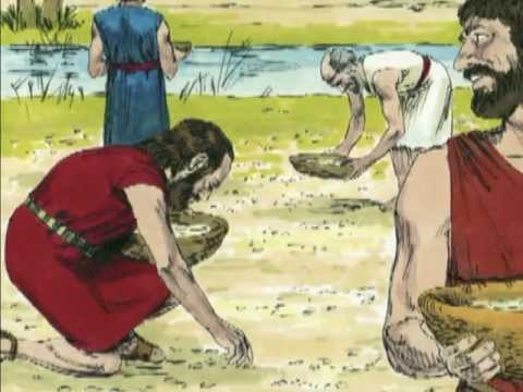 Bible Stories - Manna In The Wilderness video