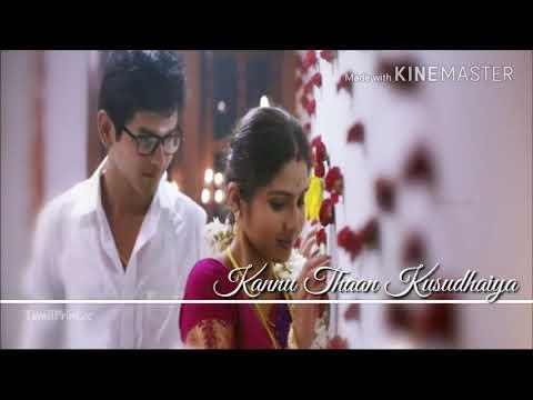 Cute Romantic Song New what's app status with lyrics    Palli paruvathile