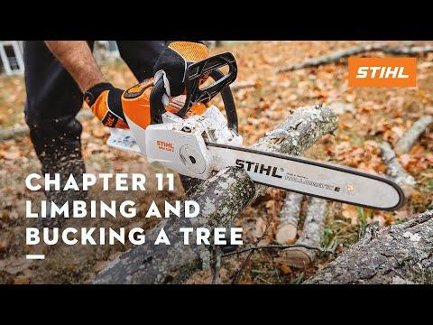 Chapter 11: Limbing and Bucking a Tree