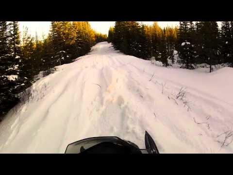 1200 ski doo renegade