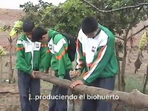 Download Video de JURAMENTACIÓN MUNICIPIO ESCOLAR en VIDEOS.com.es