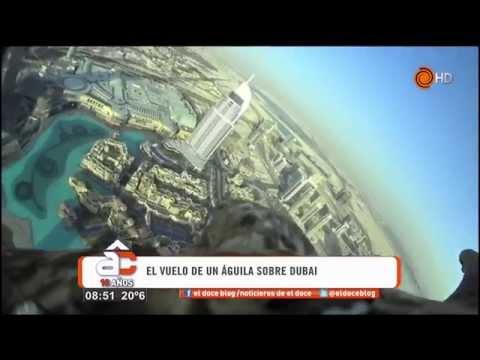 El vuelo de un águila desde el edificio más alto de Dubai - Arriba Córdoba