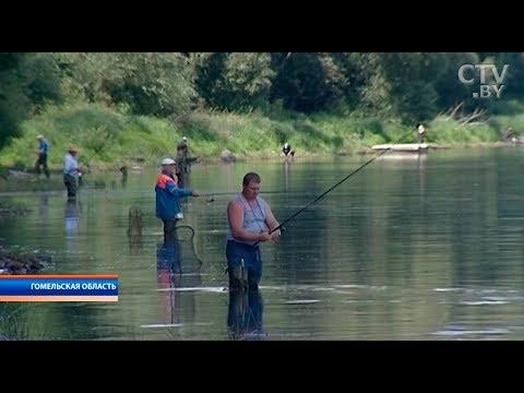 путевки на рыбалку в беларуси