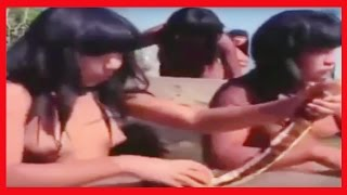 Yanomami Tribes Amazon 2016 Amazon Rain Forest Yanomami Tribes Hard Life