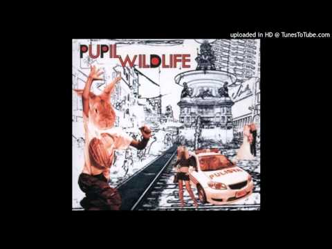 Pupil - Hypersober