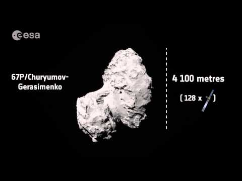 How big is Rosetta compared with the comet?