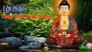 Nghe Lời Phật Dạy Mỗi Đêm Thay Đổi Cuộc Sống Phước Đức May Mắn Luôn Tìm Đến
