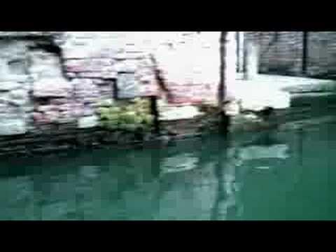 Kotzen, Richie - Chase It