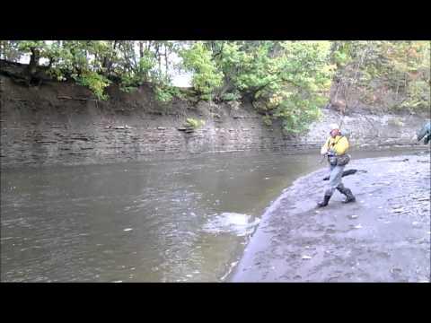 Erie Steelhead Fishing October 21, 2013