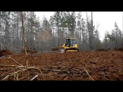 Bulldozer Clearing Trees